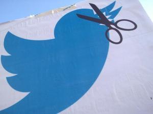 Leyes Mordaza, manifestación 30-6-2015 el pájaro de Twitter